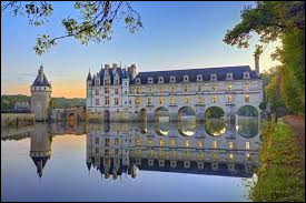 """Lequel de ces châteaux ne fait partie des 'Châteaux de la Loire"""" ?"""