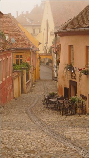 Il y a bien quelques touristes, dans cette ville de Roumanie, mais Sighisoara vaut vraiment le détour ainsi que le soutient mon ami Cosmin. Comment appelle-t-on aussi cette fameuse région de « Transylvanie »?