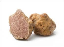 La truffe blanche, plus rare que la truffe noire, se négocie à environ 5 000 euros le kilo !Dans quel pays a-t-on le plus de chance de la trouver ?