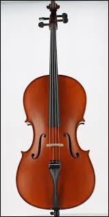 Quel est cet instrument appartenant à la famille des cordes frottées ?
