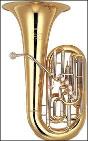 Il peut servir pour respirer dans l'eau, mais c'est aussi un instrument de musique qu'on appelle...