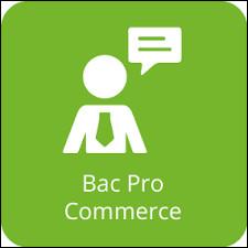 Pourquoi utiliser Mindview en Bac Pro Commerce ?