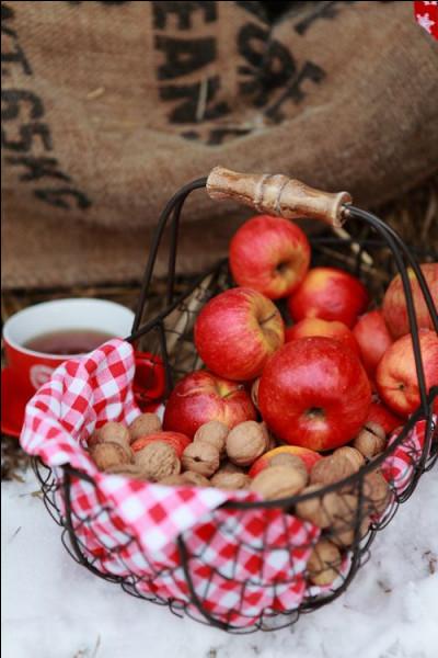 Quelle peut être cette variété de pommes ?
