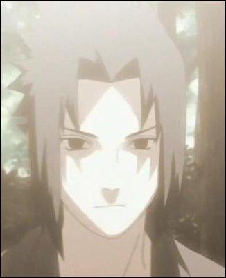 Quelle est la technique que Itachi a donné à Sasuke ?