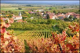 Derrière les vignes, vous avez Billy-sous-les-Côtes. Ancienne commune Meusienne, elle se situe en région ...
