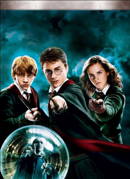 Comment s'appellent les deux amis de Harry ?