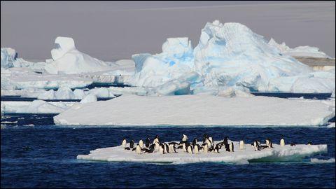 Quel est l'autre nom de l'océan Antarctique ?