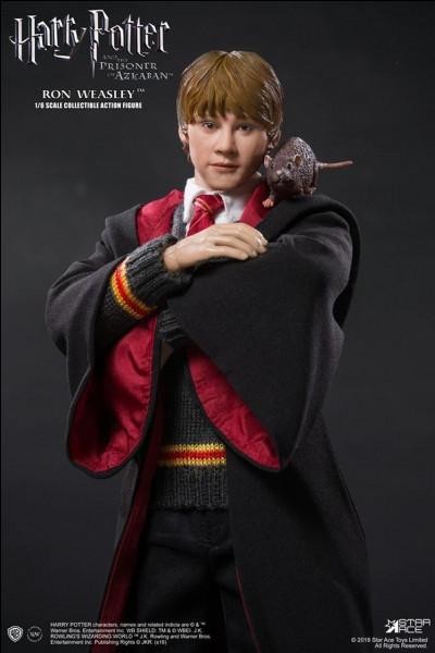 Comment Ron et Hermione deviennent-ils amis ?