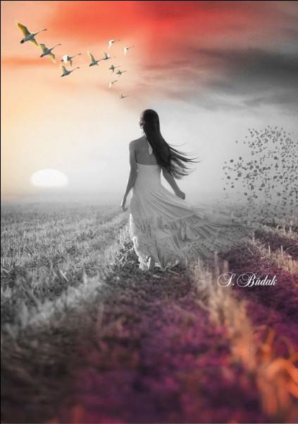"""Qui chantait """"Tu viendras longtemps marcher dans mes rêves, tu viendras toujours du côté où le soleil se lève"""" ?"""