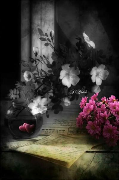"""Son poème s'appelait """"Rêve parisien"""", extrait du recueil """"Les Fleurs du Mal"""" :"""
