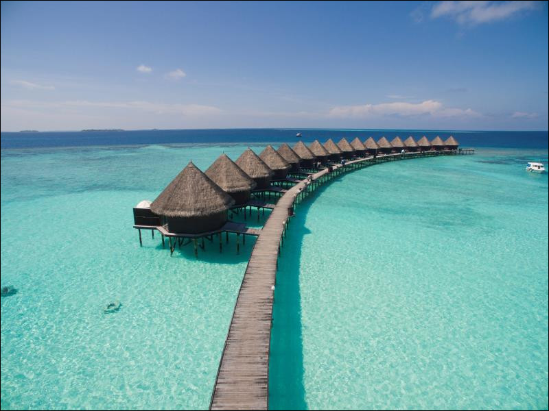 Les Maldives comptent plusieurs complexes hôteliers de luxe échoués sur des atolls et dévolus à la découverte de la nature. Les Maldives sont...