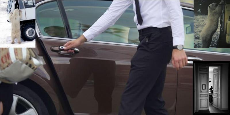 Si vous allez vous promener à Churchill, une petite commune de l'état du Manitoba, dans le grand nord canadien, surtout, n'oubliez pas que certaines mesures de sécurité sont à prévoir ! Vous et votre voiture sont concernées !Que se passe-t-il ?