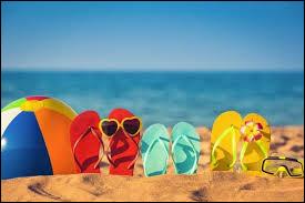 ........ penses-tu aller durant tes vacances d'été ?