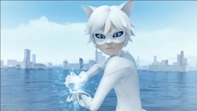 Chat Blanc a les yeux...