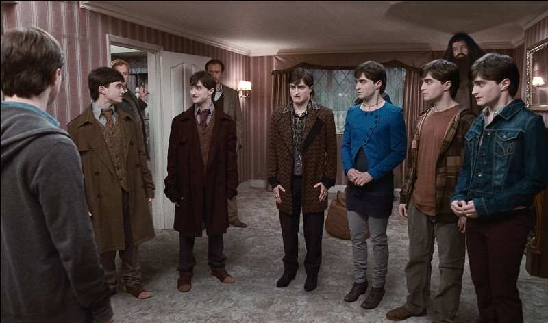 Qui sont ces sept Harry ?