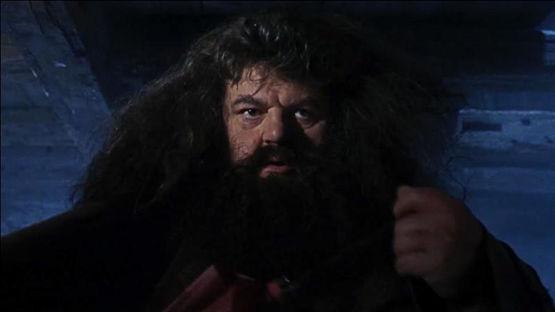 Qu'offre Hagrid à Harry ?