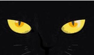 13 questions pour les superstitieux