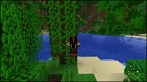 Comment récupérer des lianes dans un biome Marais ?