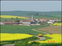 Entouré de champs de colza, vous avez au loin le village d'Athienville. Commune du Grand-Est, dans le canton de Baccarat, elle se situe dans le département ...