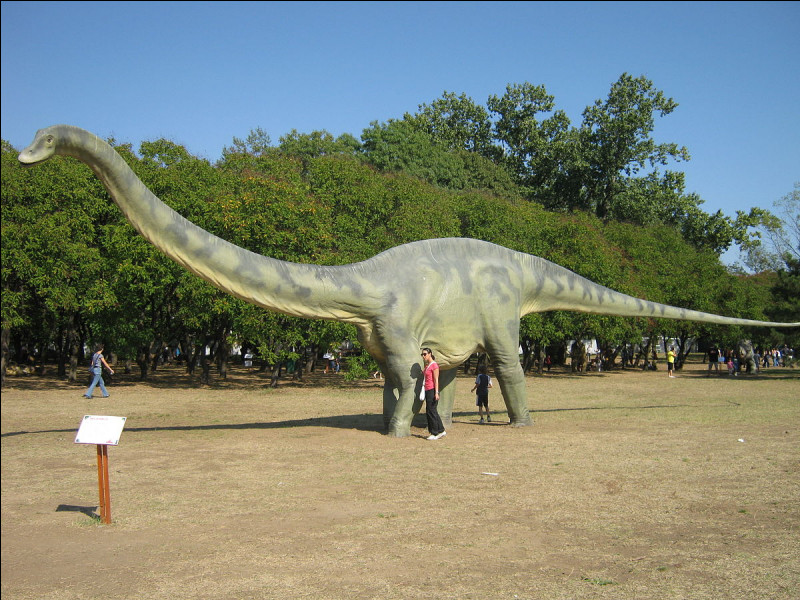 Quelle espèce de dinosaure apercevons-nous ici ?