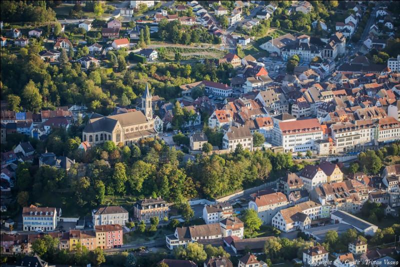 Cette ville alsacienne de 5 700 habitants, capitale de la petite région du Sundgau, sous-préfecture du Haut-Rhin, c'est ...