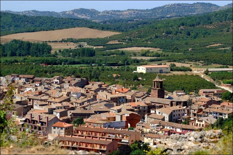 Prades, petite ville de 6 100 habitants, traversée par le Têt, est une sous-préfecture des ...