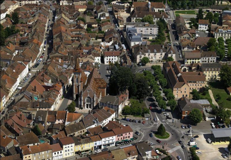 Cette sous-préfecture du département de Saône-et-Loire, peuplée de 6400 habitants, traversée par la Seille au coeur de la Bresse bourguignonne, c'est ...