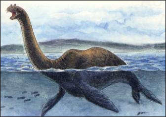 Pour expliquer l'identité du monstre, quel zoologue belge a proposé une nouvelle espèce de pinnipède à long cou ?