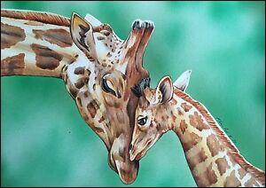 Vous avez bien sûr reconnu ces animaux, mais leur nom peut signifier autre chose !