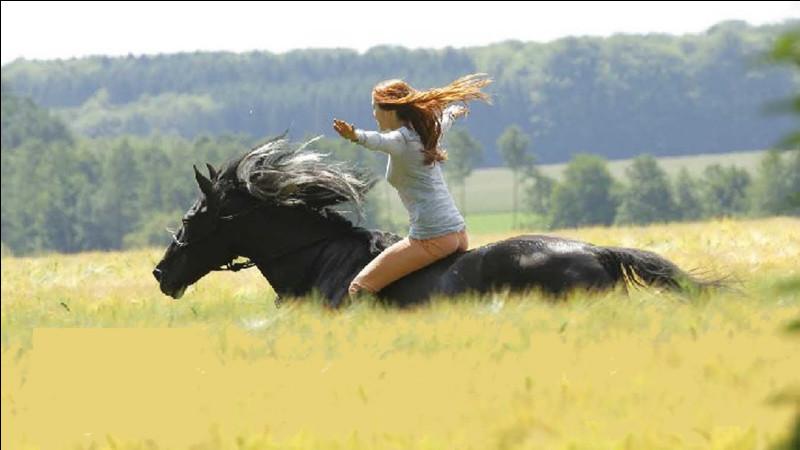 Un cheval vit...