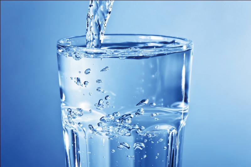 Combien de litres d'eau boit un cheval ?