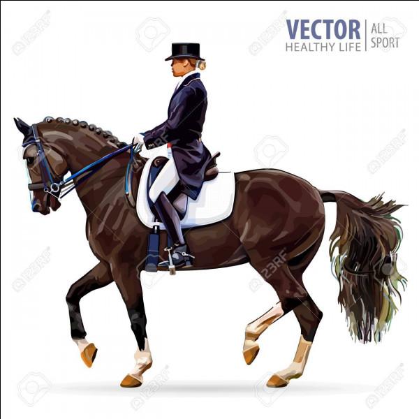 Quelle race (ou quelles races) de cheval sait (ou savent) faire du piaffer ?