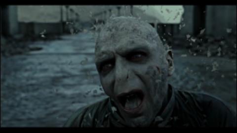 """Qui a dit : """"On les a eus,Vaincus, battus,Le p'tit Potter est un héros,Voldy nourrit les asticots,Ils ont tous été écrasés,Maintenant, on peut rigoler !"""""""