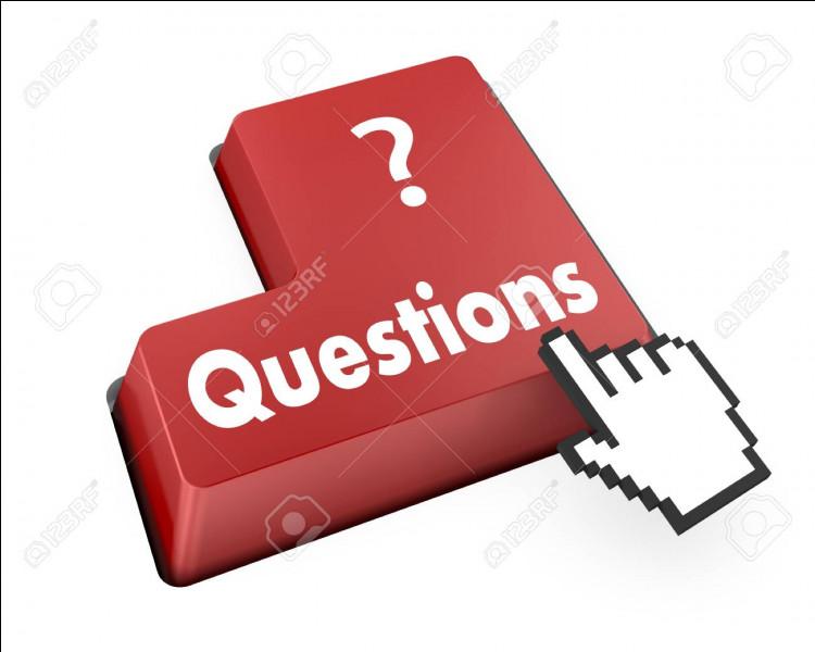 Quelle est la spécialité de Rémy Julienne au cinéma ?