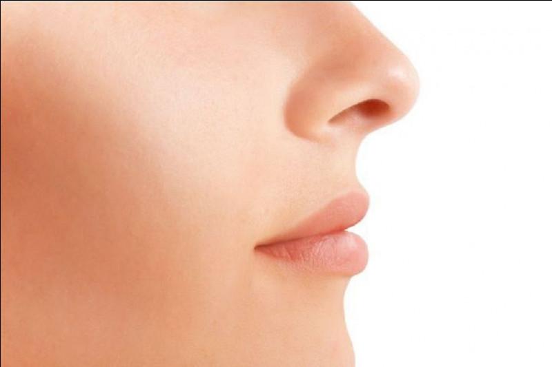 Quel est le nom de la perte totale de l'odorat ?