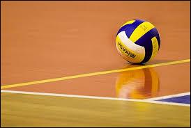 L'épaisseur des lignes d'un terrain de volley-ball est de :