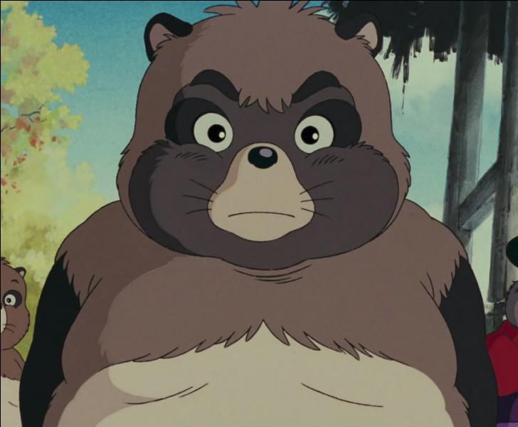 Comment s'appelle ce Tanuki ?