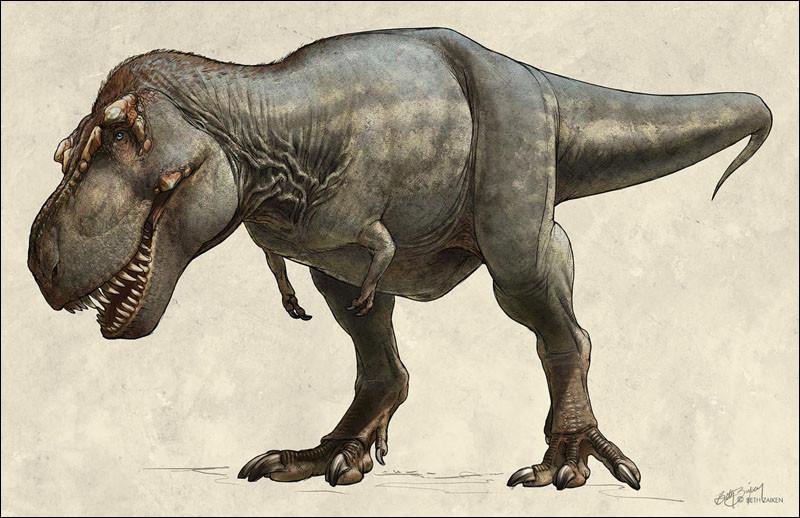 À quelle vitesse allait le T-Rex ?