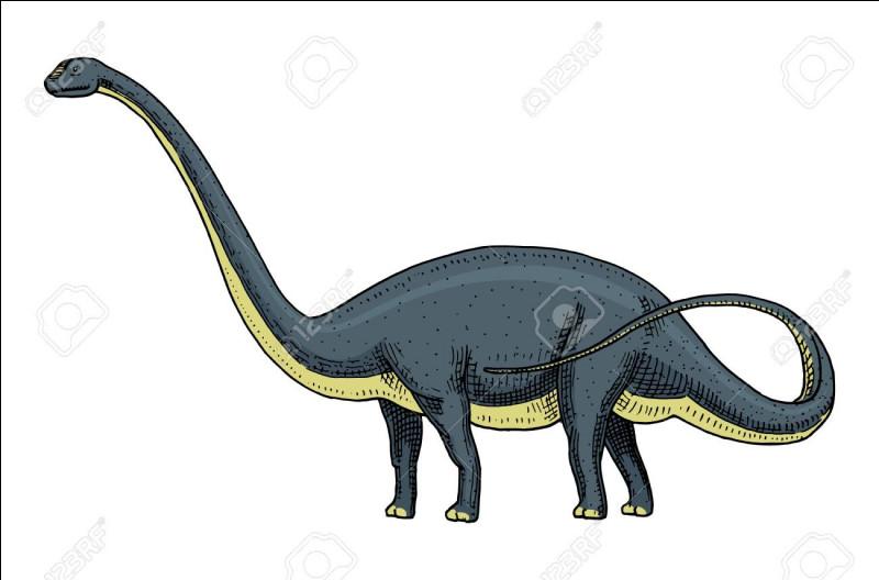 Quelle est la taille d'un brontosaurus ?