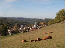 Village de Nouvelle-Aquitaine, dans le parc naturel régional de Millevaches en Limousin, Moutier-Rozeille se situe dans le département ...