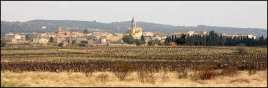 Saint-Pierre-de-Vassols est un village Vauclusien situé en région ...