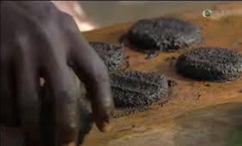 Le gâteau de mouches, confectionné à base de mouches est un plat de quel continent ?