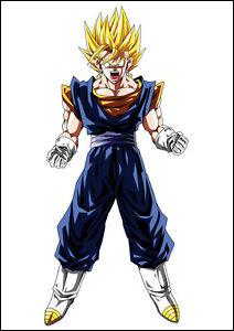 Quel est le nom des boucles d'oreilles que portent Vegeta et Goku pour fusionner en Vegeto ?
