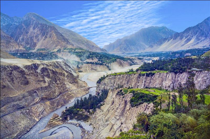 Le Croissant d'Or, situé aux confins de l'Afghanistan, de l'Iran et du Pakistan, désigne la principale région au monde de production d'une drogue. Laquelle ?