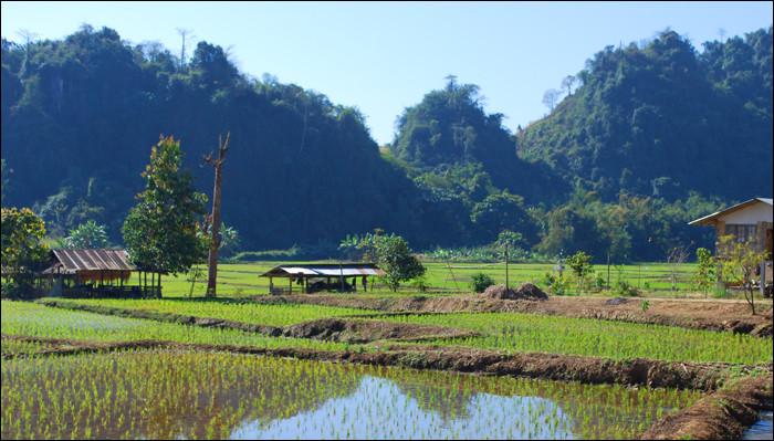 Comment nomme-t-on cette région d'Asie du sud-est située aux frontières du Laos, de la Birmanie et de la Thaïlande ?