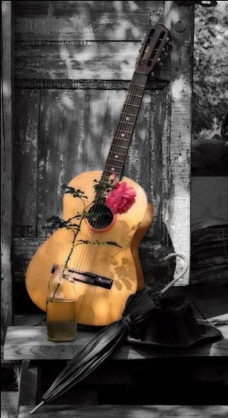 """Qui chantait """"S'il n'y a que mes pas qui résonnent, c'est qu'il ne reste plus personne"""", chanson qui fait partie de son album """"Fragile"""" ?"""