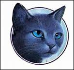 Qui était chef lorsque Lune Bleue a été nommée lieutenant ?