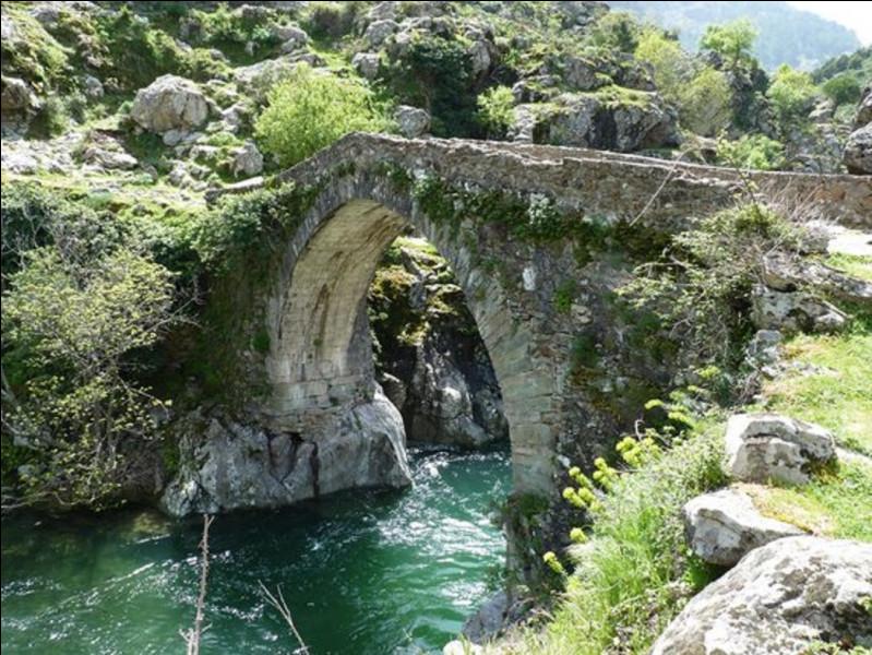 Quel est le nom de ce type de pont, typiquement corse ?