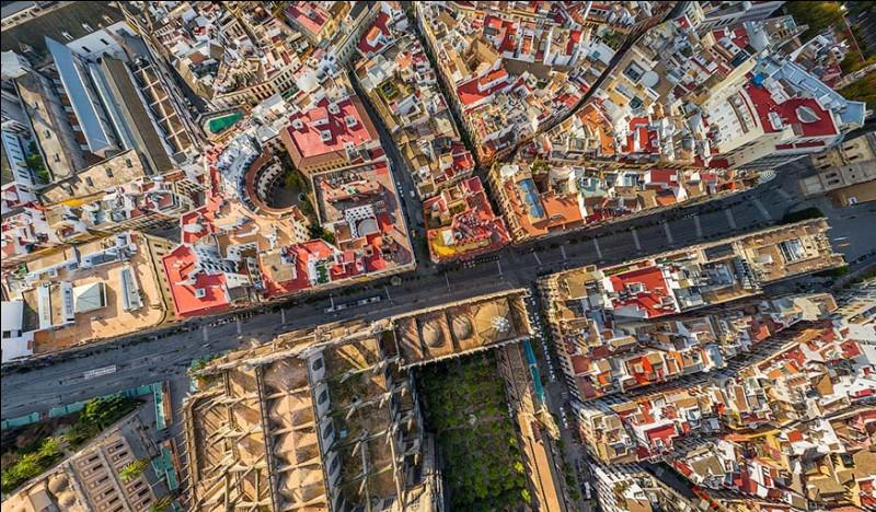 Cette ville est capitale de la communauté autonome d'Andalousie. Son centre historique (que l'on voit ici), le District Casco Antiguo, est l'un des plus grands d'Espagne.Quelle est cette ville où l'on trouve la Giralda, l'Alcazar et l'Archivo de Indias, qui font partie du patrimoine mondial de l'Unesco ?