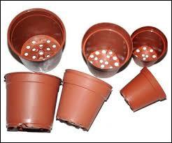 Quelle phrase est correcte à propos des pots en plastique ?